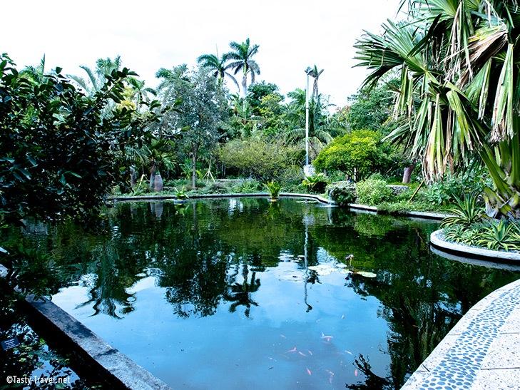 Botanischer Garten Miami Beach See